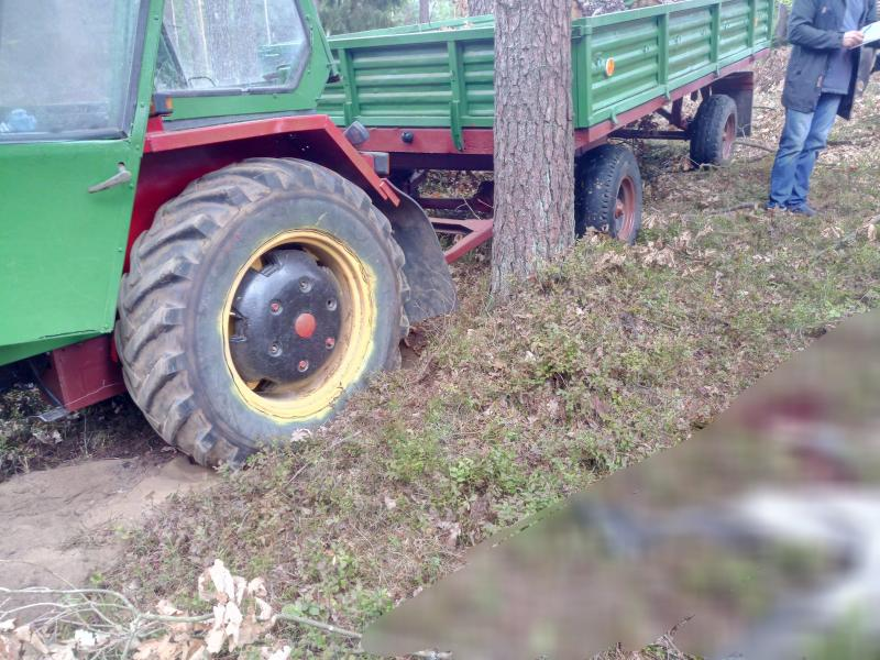 Tragiczny wypadek w lesie pod Tychowem - mężczyzna poniósł śmierć na miejscu.