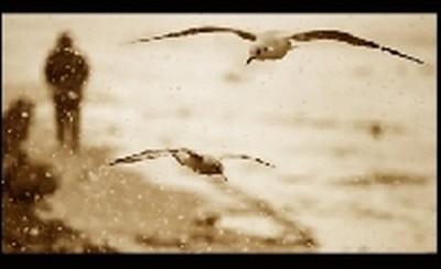 Wystawa prac Białogardzkich Fotografików