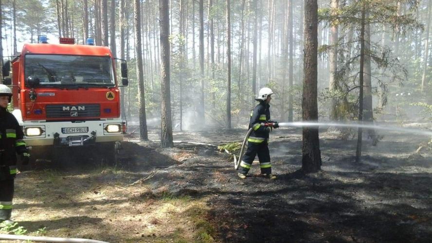 Wypalanie traw surowo zabronione!!! Drastyczne zdjęcia!