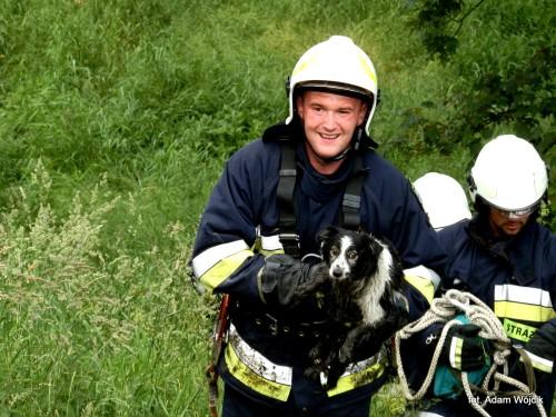 Strażacy uratowali psa.