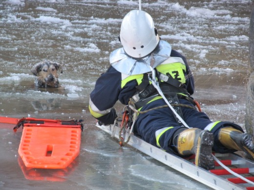 Strażacy uratowali topiącego się psa - ZDJĘCIA
