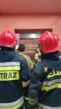 Niecodzienna interwencja Straży Pożarnej w Białogardzie.