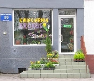 Kwiaciarnia Krokus